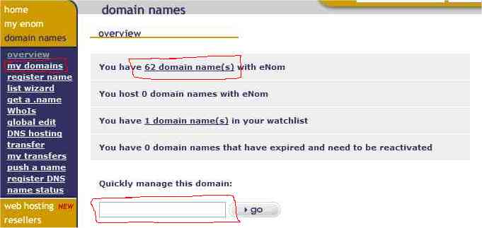 Click 'My Domains' or '## Domain Names' or enter a name in